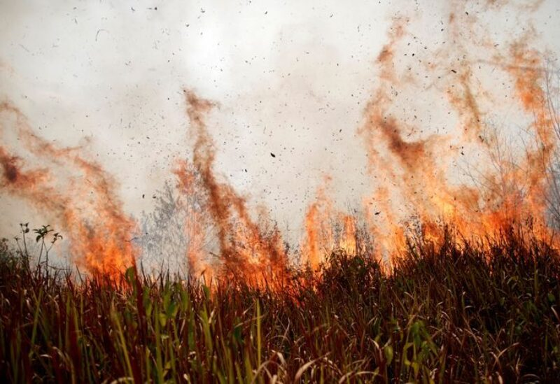 Tract of Amazon jungle burns as it is cleared by loggers and farmers in Porto Velho, Brazil August 24, 2019.