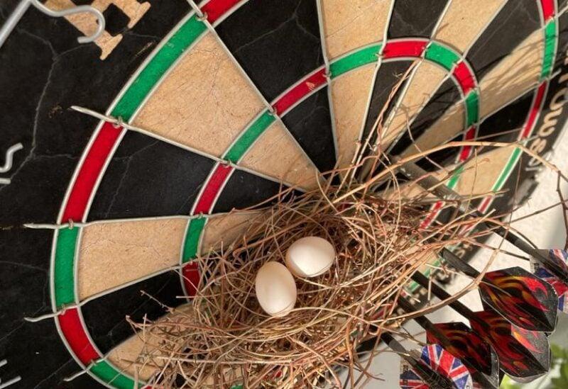 Doves nest hanging off dartboard.