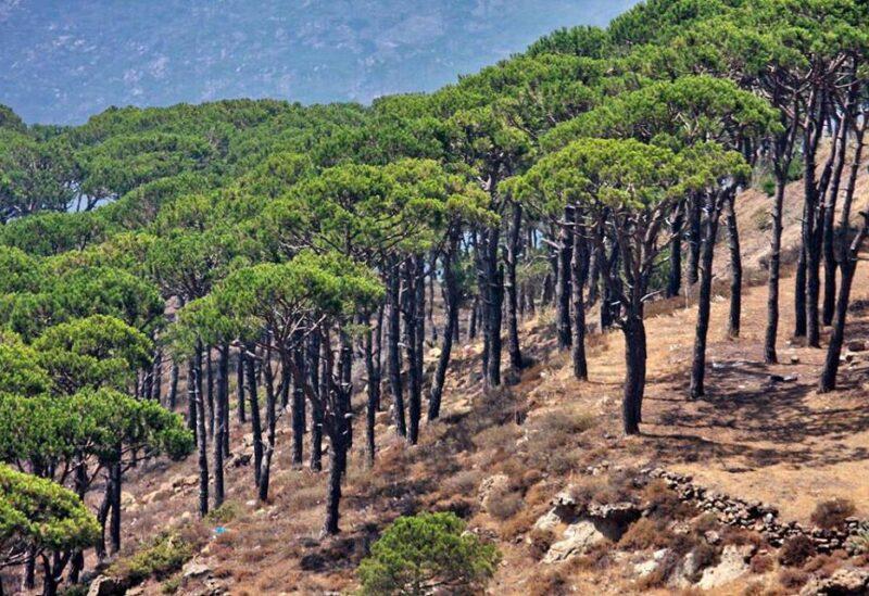 Mtein, Lebanon