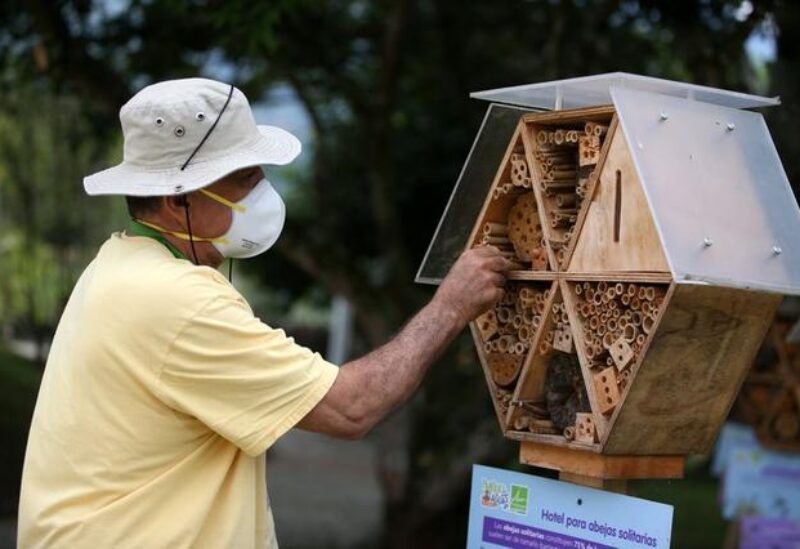 Hector Ivan Valencia, an assistant for the local authority's risk management unit, cleans the structure of a wooden hotel for solitary bees made by the Metropolitan Area of the Aburra Valley (AMVA) in Barbosa, Colombia April 21, 2021. REUTERS