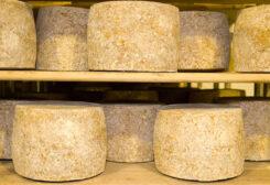 UK Cheese exports