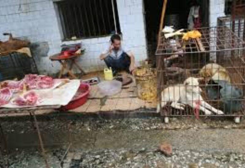 Wuhan meat markets