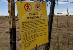 General view of a bubonic plague warning sign outside of the main gates of Dick's Sporting Goods Park before the match between the San Jose Earthquakes against the Colorado Rapids in August 2019. (Reuters)