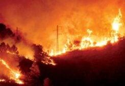 Fire in Akkar